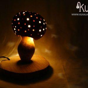 lampara de ambiente ecologica amanita