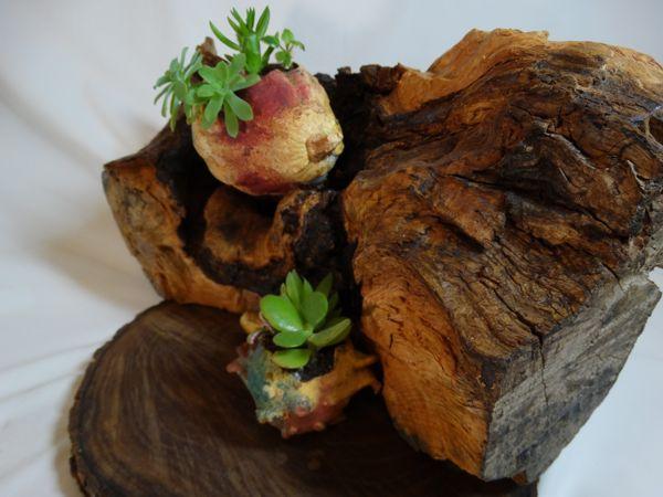 macetero tronco madera artesano