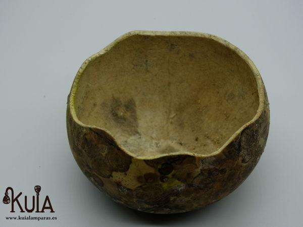 calabaza con concha de santiago tallada